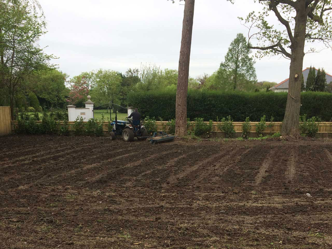 Levelling ground for a seeding in Ascot Berkshire - digger hire with a driver for levelling ground Berkshire Hampshire Surrey